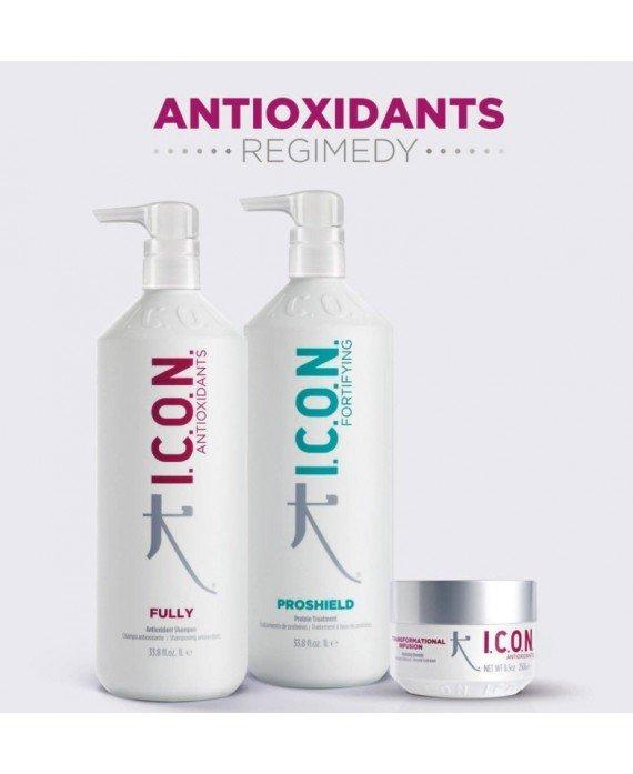 Icon Pack Regimedy Antioxidant Familiar PACKS PELUQUERIA